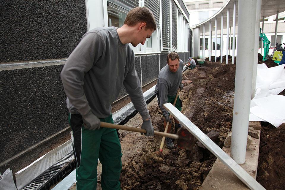 Team Und Mitarbeit Jobs Gartenbau Landschaftsbau Peter Rose Thomas