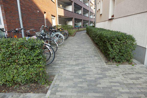 Wohnstadtbau-Rose-Gartenlandschaftsbau-Grevener-Str-29