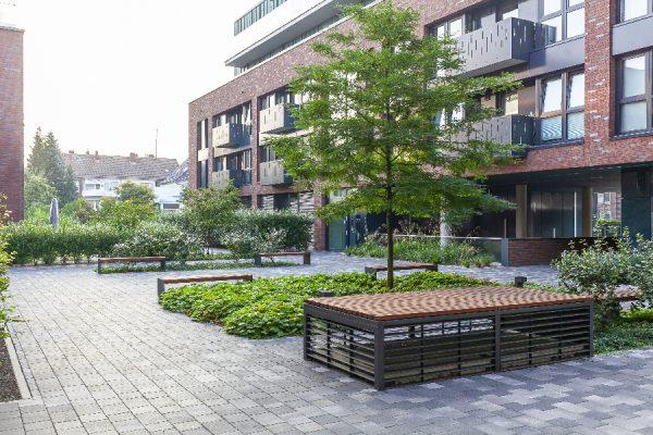 Wohnstadtbau-Rose-Gartenlandschaftsbau-Sentruper-Tor